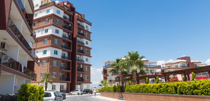 1 Bedroom Apartment of 51m² in Long Beach